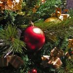 Епархиальная  Рождественская  елка в Кургане