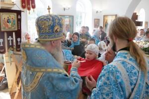 Престольный празднник в честь Порт-Артурской иконы Божией Матери 2017 (5)